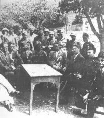 Četnici, ustaše i domobrani u Bosni.