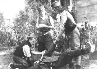 Četnički zločin u Srbiji