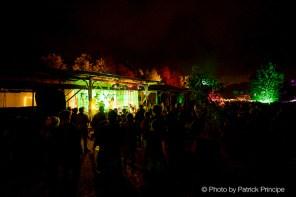 The Konincks @ Zaffaraya - Fest © 31.07.2016 Patrick Principe