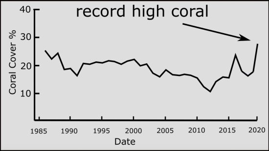 Record Coral At Great Barrier Reef Shames Alarmists And Media Great-barrier-reef-2