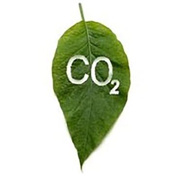 co2-leaf