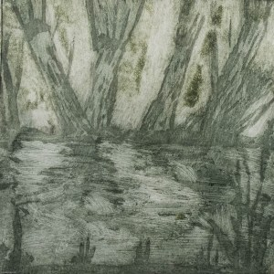 Willows Etching2