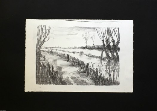 Supporting Studies Sheet 1:  River  Project 1.1 Natural Landscape