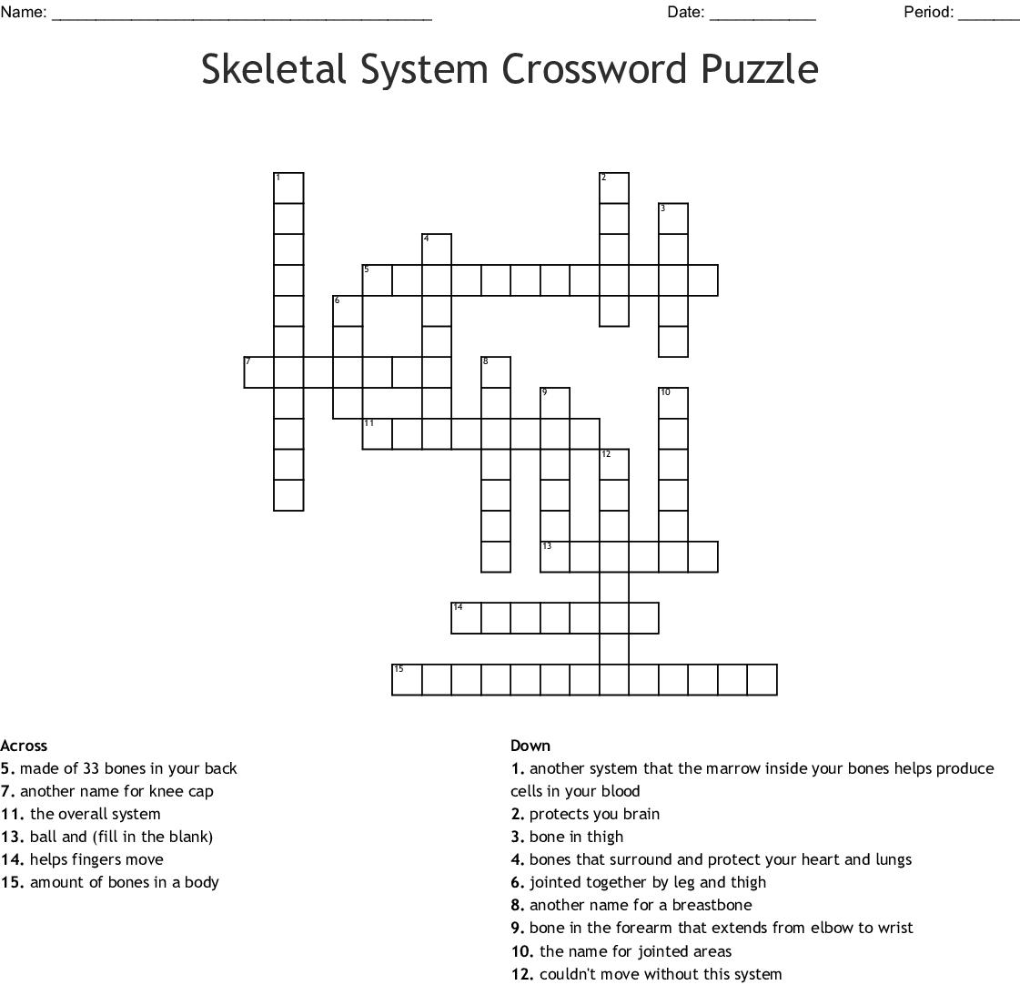 The Skeletal System Worksheet Answer Key
