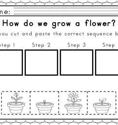 Sequencing Events Worksheets 2nd Grade   Printable Worksheets and  Activities for Teachers [ 2550 x 3300 Pixel ]