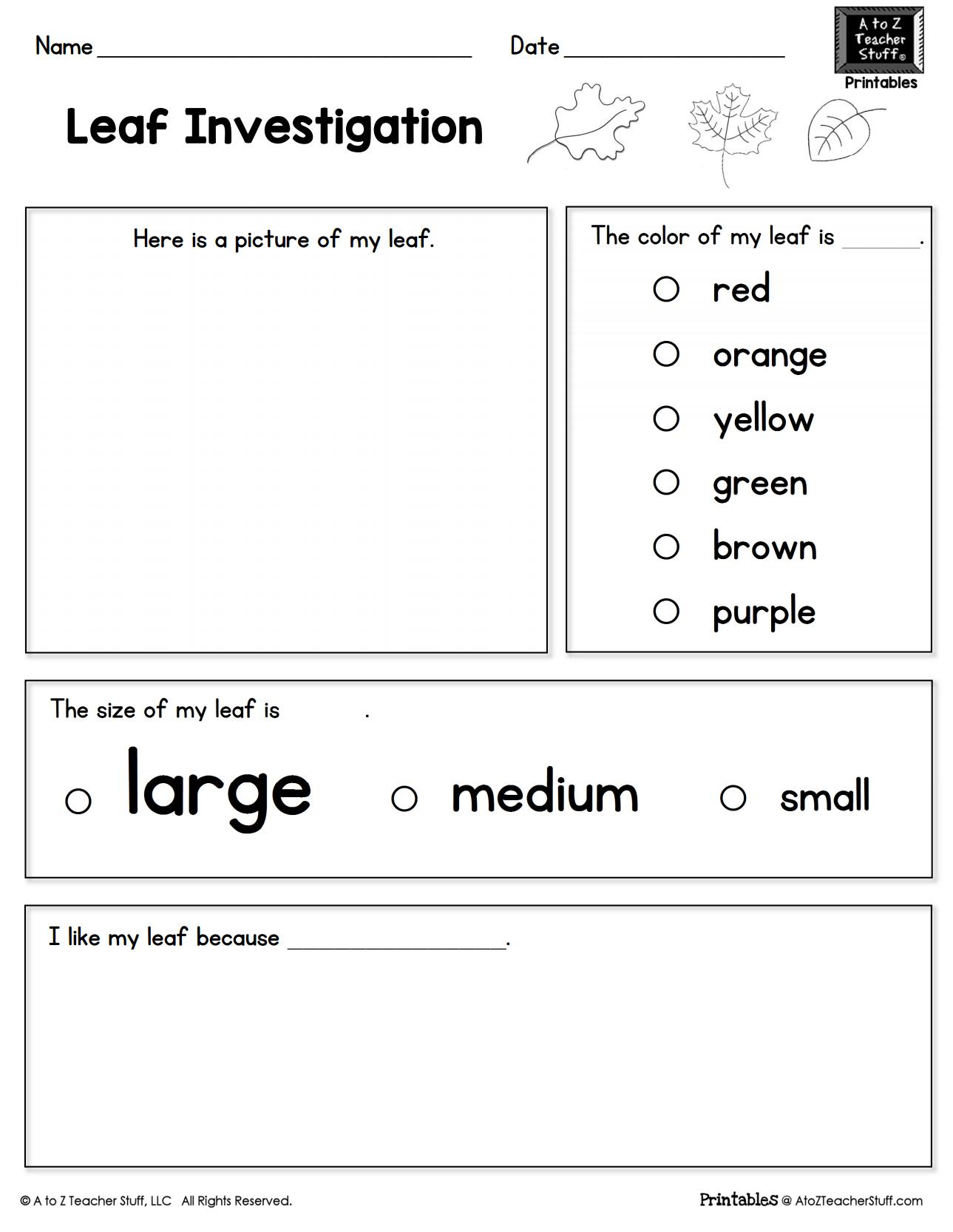 Leaf Investigation Printable Worksheet