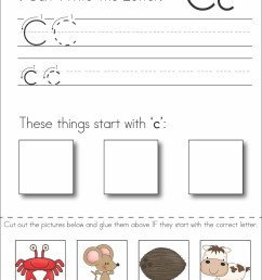 Fact And Opinion Cut And Paste Worksheets   Printable Worksheets and  Activities for Teachers [ 3300 x 2550 Pixel ]