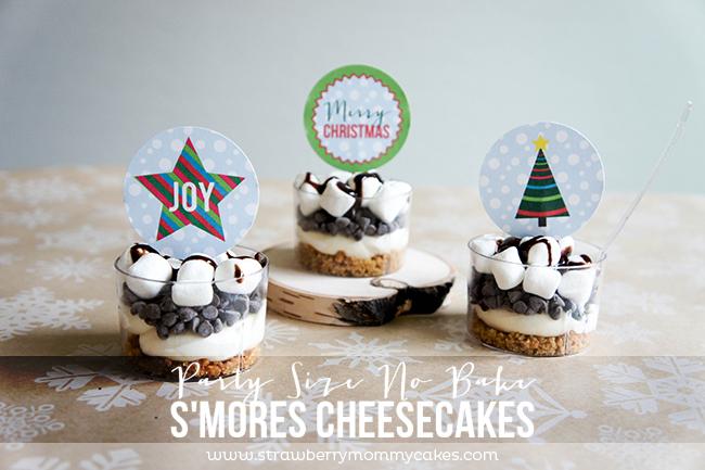 Party Size No Bake S'mores Cheesecakes