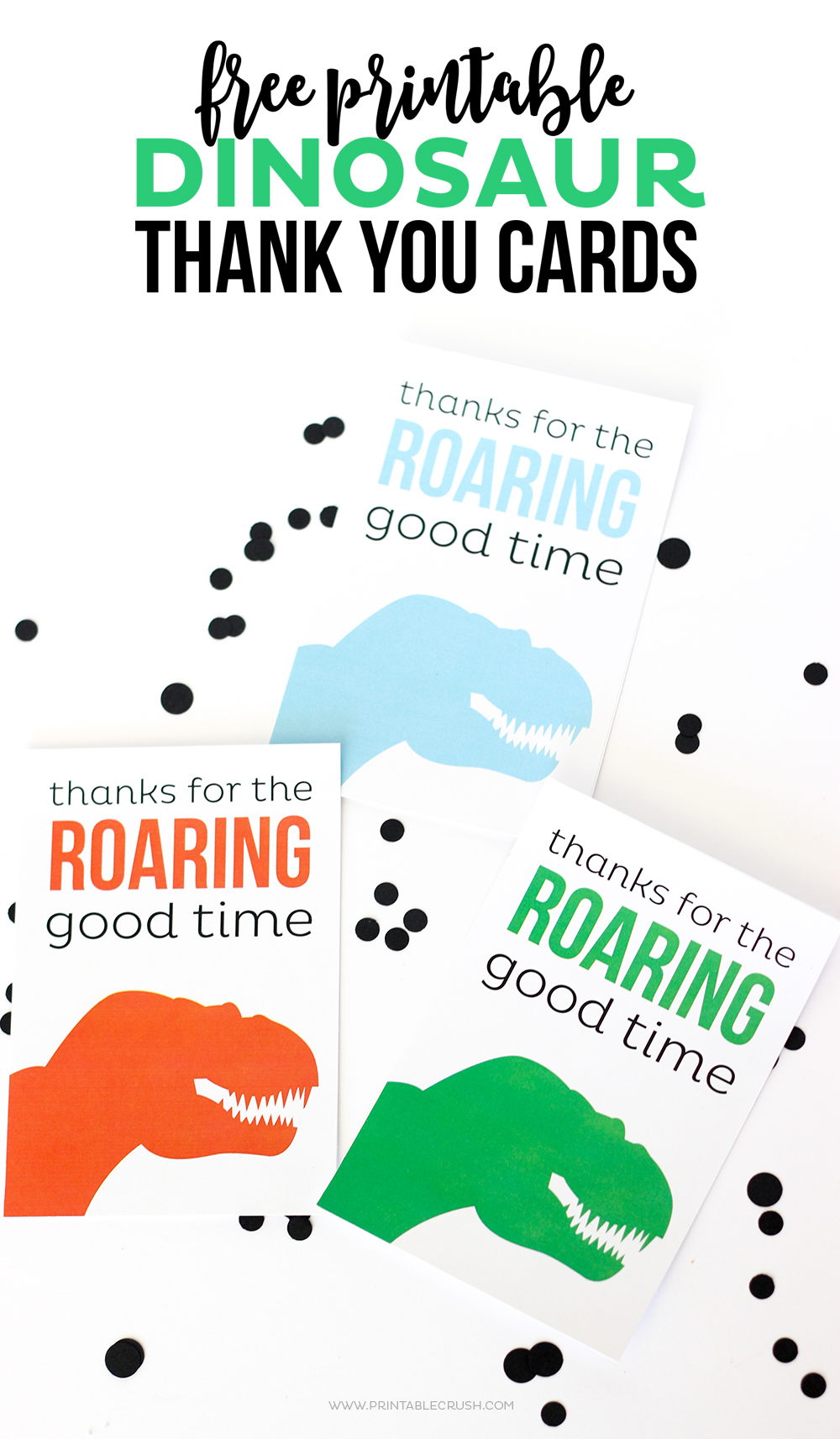 3 dinosaur thank you cards against white background