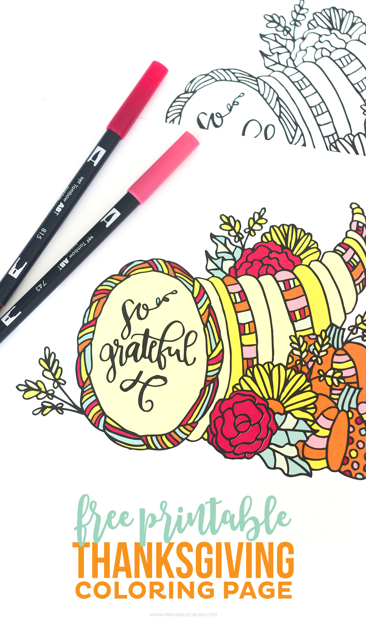 Pretty colored Thanksgiving Coloring Pages on white background with red and pink pens