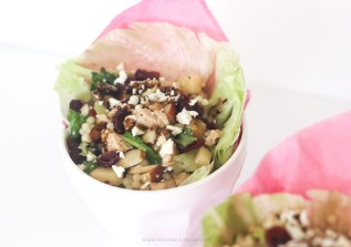 This Apple Cranberry Lettuce Wrap Recipe is so delicious and healthy. It's perfect for a healthy party side and hearty enough for a meal.