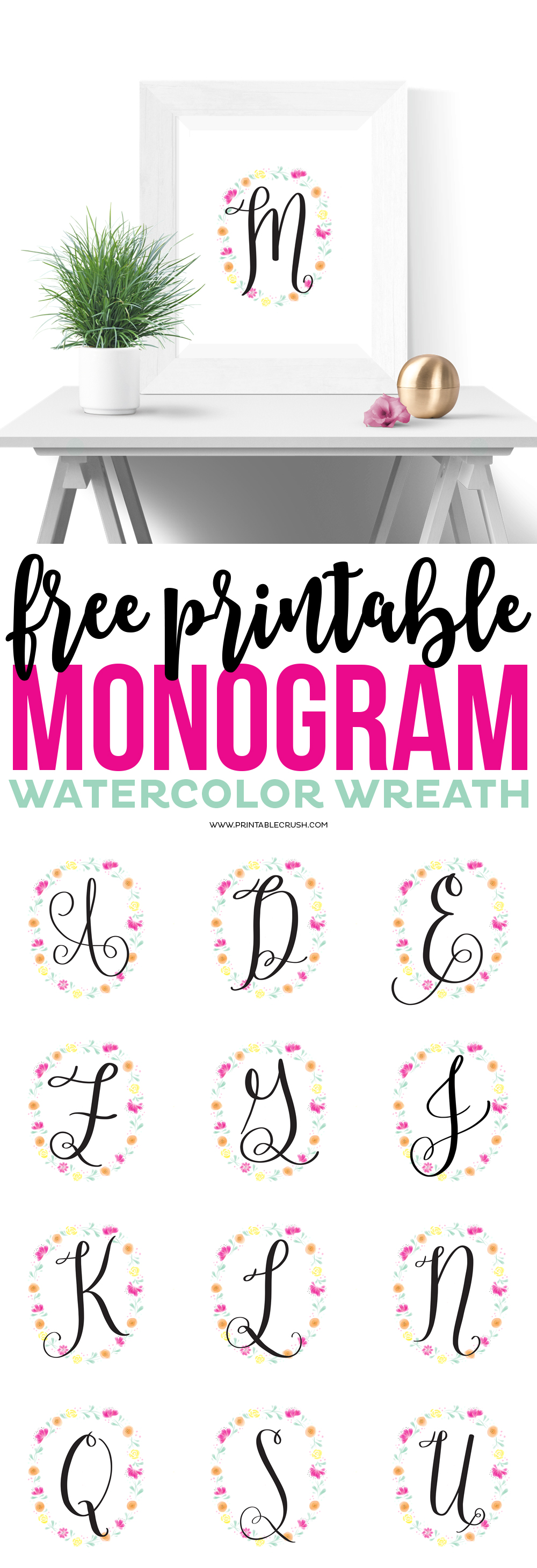 Best lettering brushes for procreate