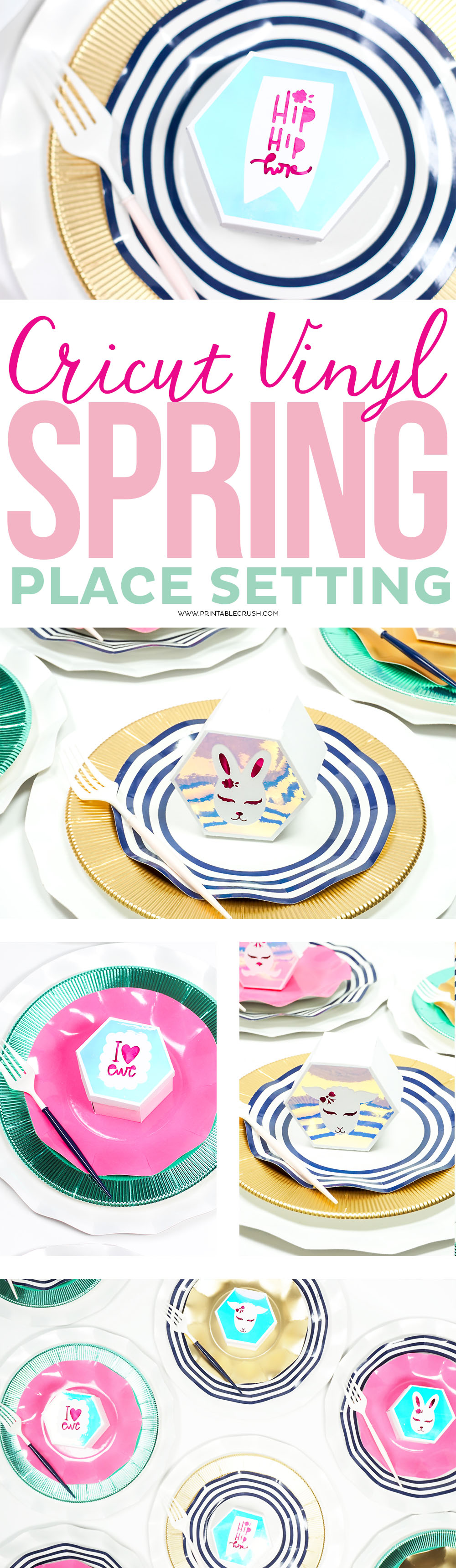 Cricut Vinyl Spring Place Setting long collage
