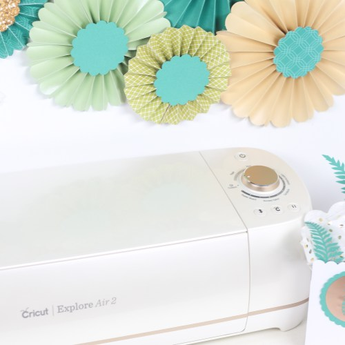Cricut and Martha Stewart Brand Collaboration with Printable Crush
