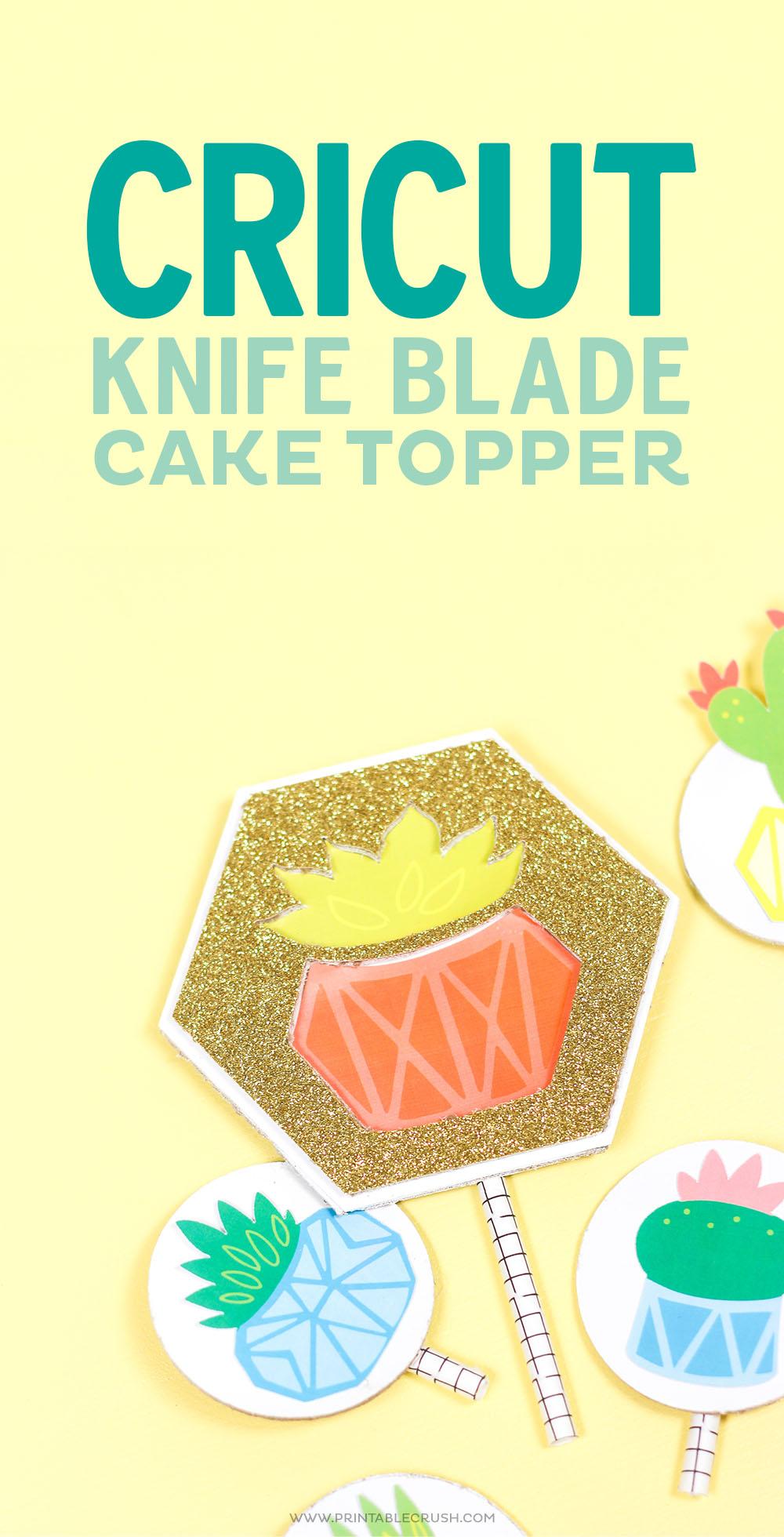 Potted Succulent Cricut Knife Blade Cake Topper
