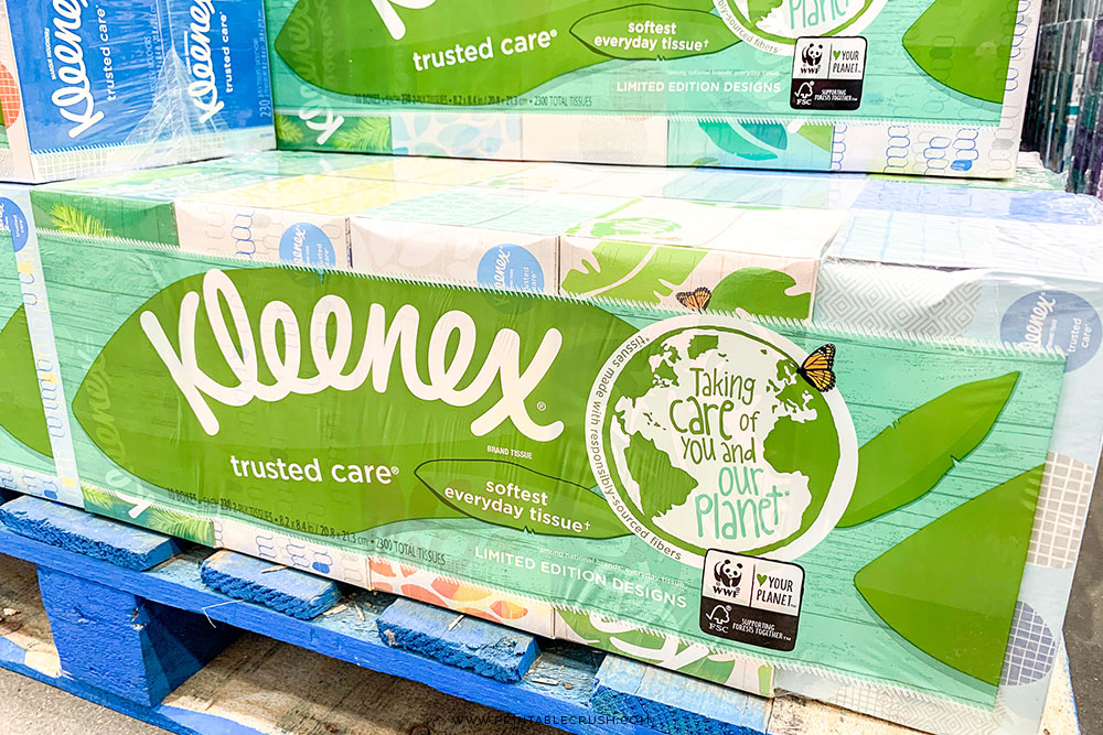 The new Kleenex® Tissue boxes have the cutest patterns - perfect for making recycled Earth Month Crafts!