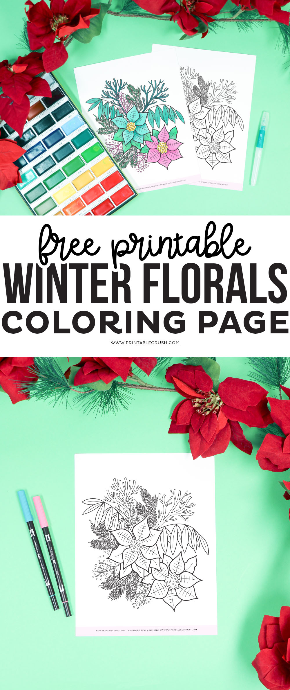 Get cozy and relax with this FREE Winter Florals Coloring Page Printable. There are so many ways you can create with this gorgeous hand drawn design. Free Winter Florals Coloring Sheet- Winter Florals Coloring Page - Free Winter Coloring Page - Printable Crush #coloringpage #adultcoloringpage #wintercoloringpage #handdrawn via @printablecrush