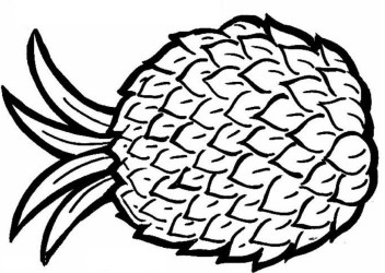pineapple coloring pages clipart welcome printable outline clip stencil cliparts fruit drawing basket fruits know library clipartpanda cheerleading reunion printablee