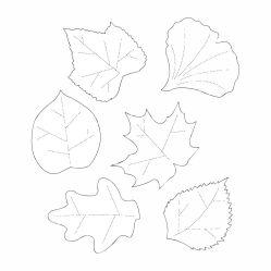 printable cut template leaves leaf paper patterns printablee