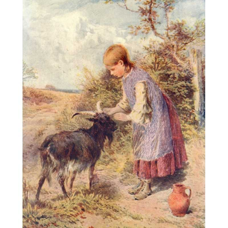 Public Domain Image DVD Victorian Children With FREE A