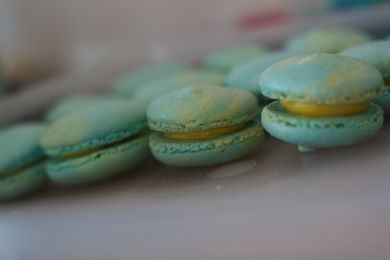 This is an image of macaroons for the Twisting by the Pool baby shower.