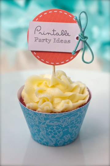 This is an image of the PPI cupcake.