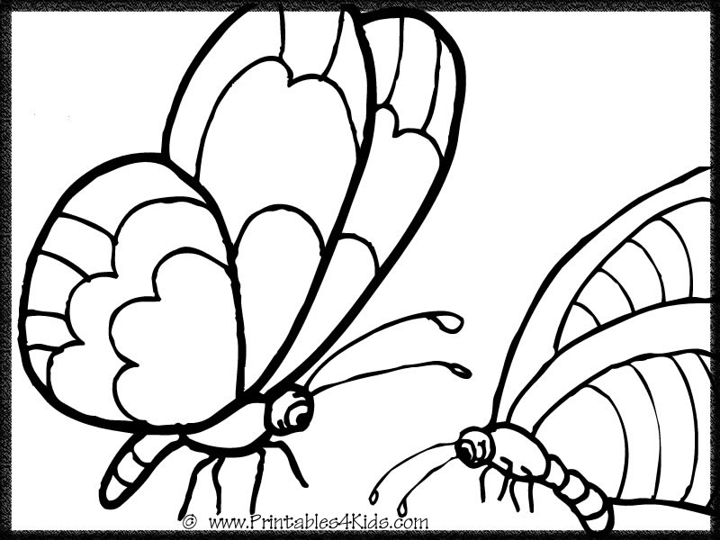 Butterfly Coloring Page 5 : Printables for Kids