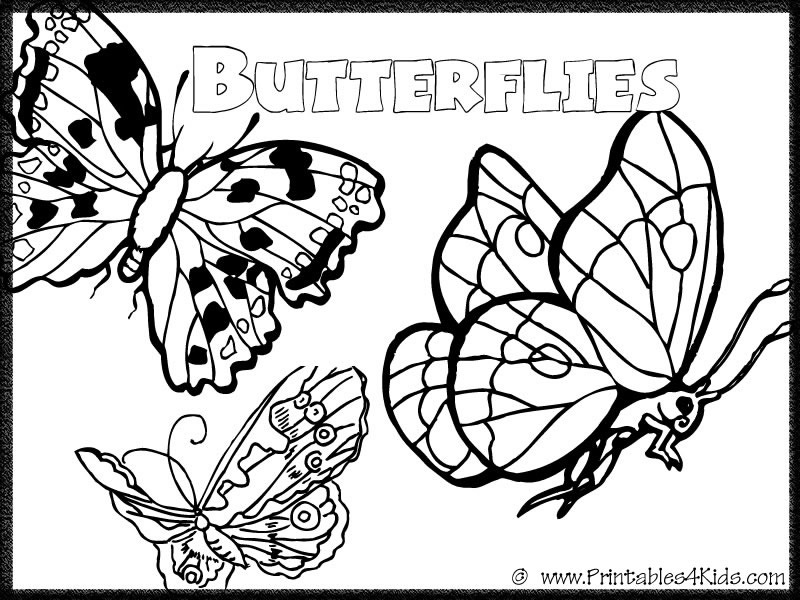 Butterfly Coloring Page 7 : Printables for Kids