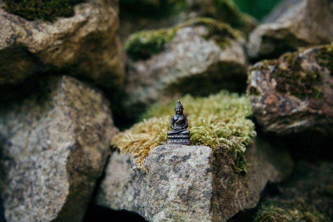 Photo of a Buddha statue taken by Samuel Austin