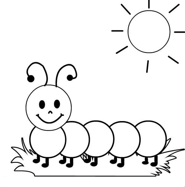 All Worksheets » Caterpillar Worksheets Preschool