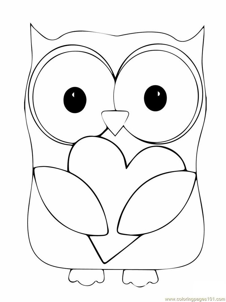 Nocturnal Bird Owl coloring pages 34 pictures cartoon clip