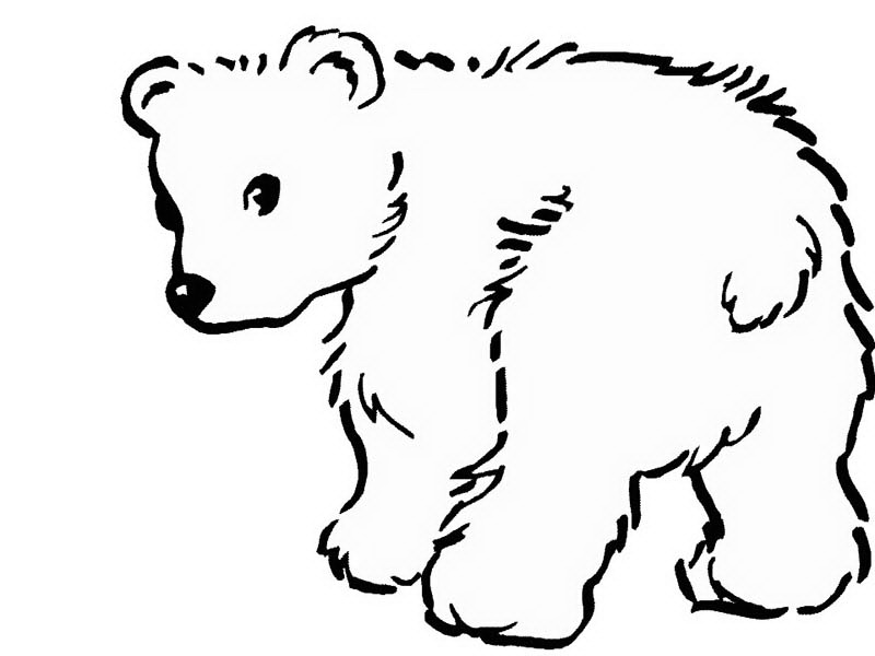 Asiatic Black Bear Coloring Page