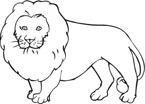 King of the Jungle 10 Lion coloring pages & Lion Birthday