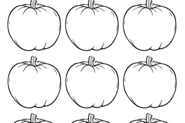 12 tiny pumpkins