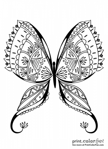 Exotic Butterfly Coloring Page Coloring Page Print Color Fun