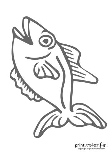Funny-fish-2