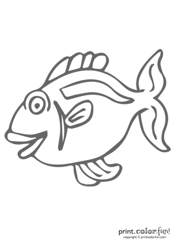 Funny-fish-5