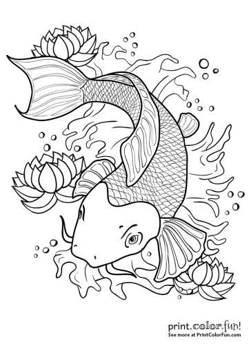 Koi fish in a pond coloring page - Print. Color. Fun!