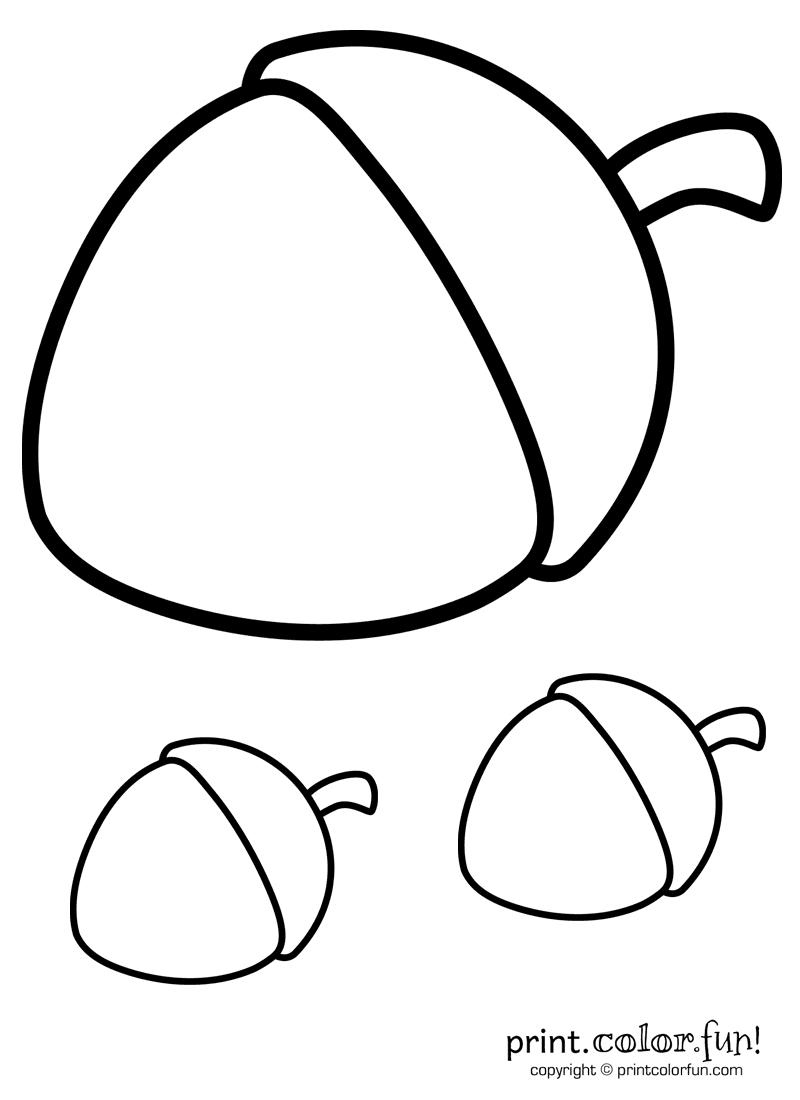 Trio of acorns coloring page - Print. Color. Fun!
