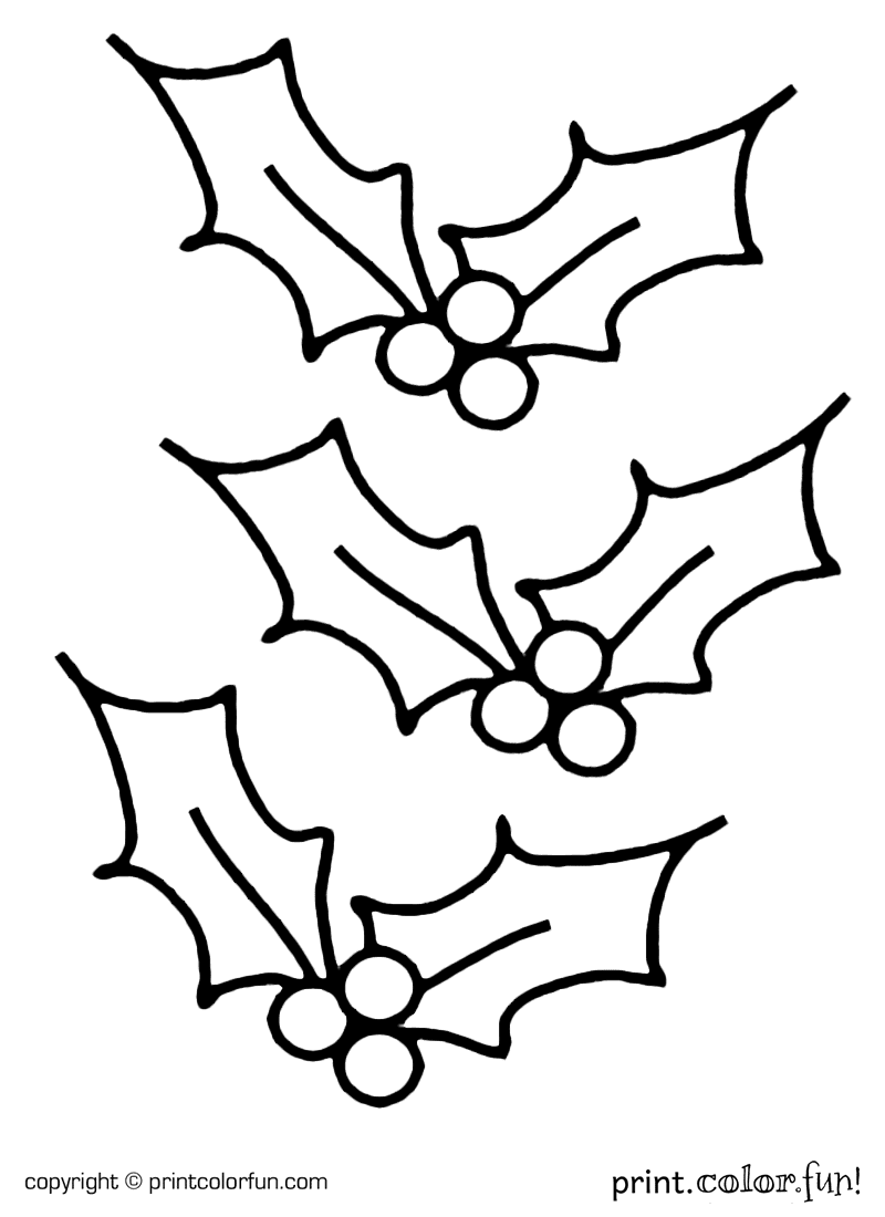 Holly For Christmas Coloring Page Print Color Fun
