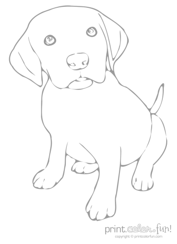 Cute puppy coloring page - Print. Color. Fun!