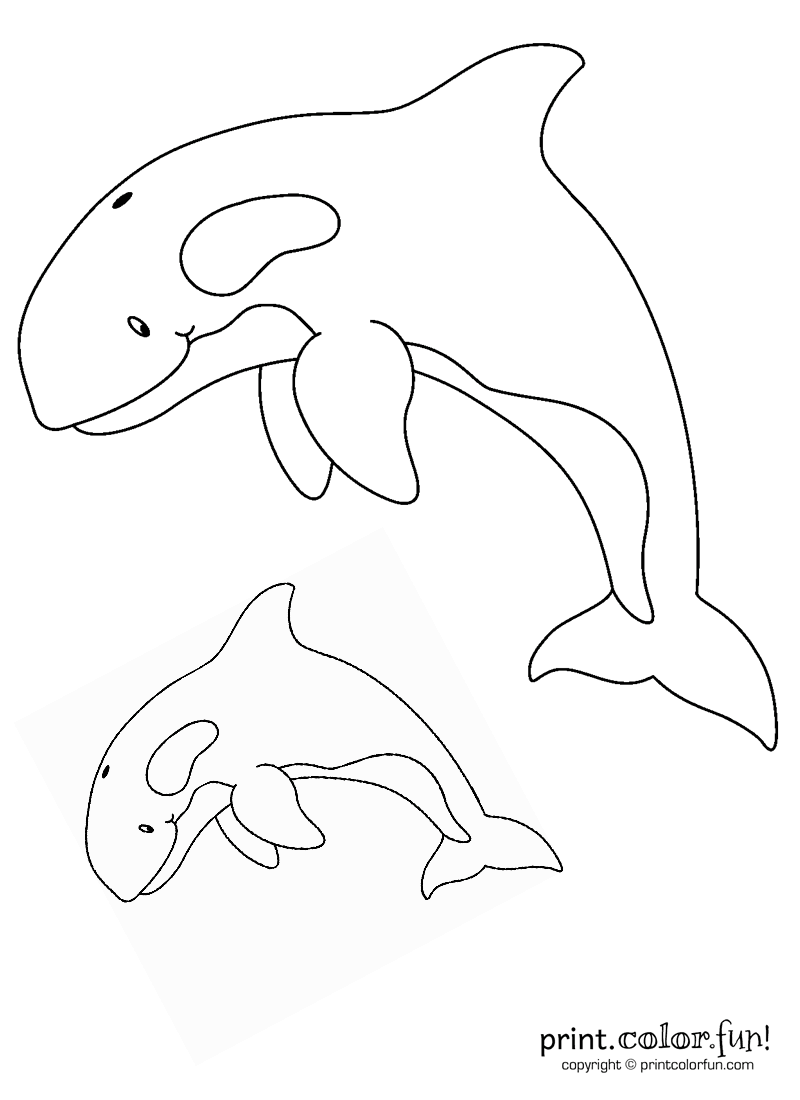 coloring pages for kids orca | Two orcas coloring page - Print. Color. Fun!