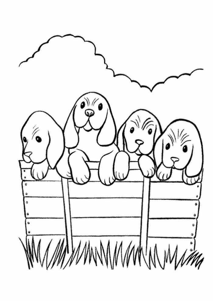 60 Dog Coloring Pages Coloring Pages
