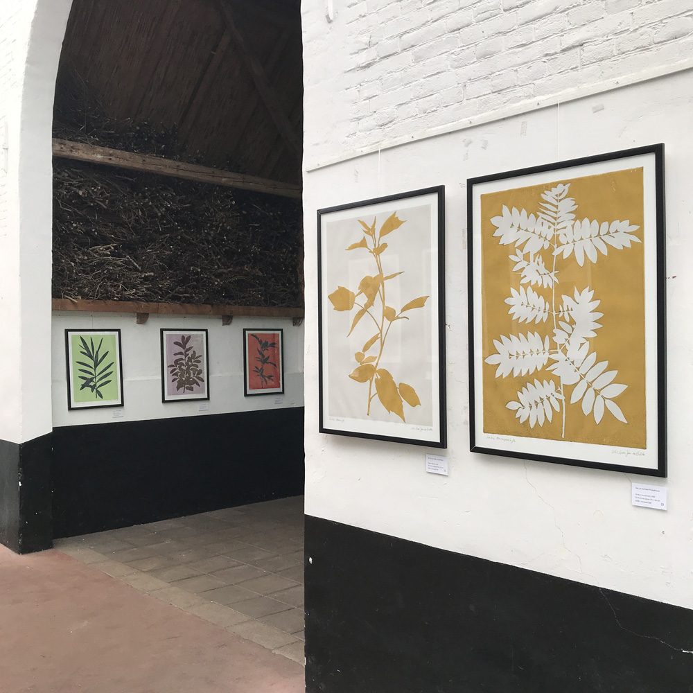Exhibition Tuinen Mien Ruys: From May 19 until July 25, 2021