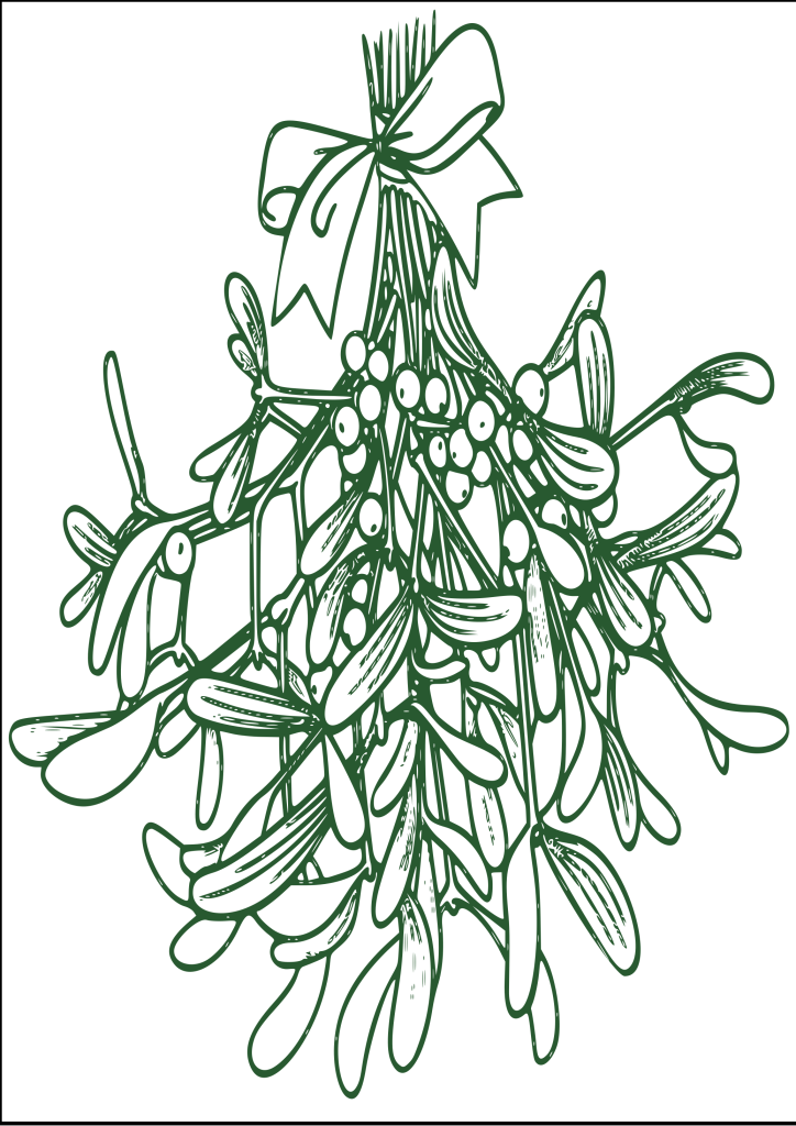 christmas mistletoe drawing realistic