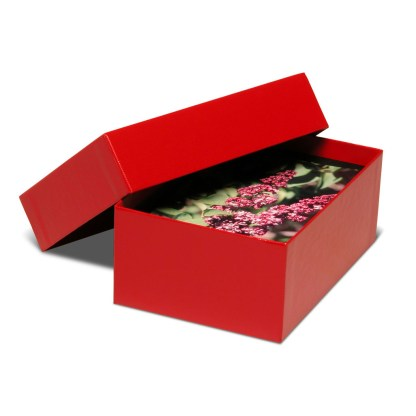 Red 4x6 proof box, shown opened