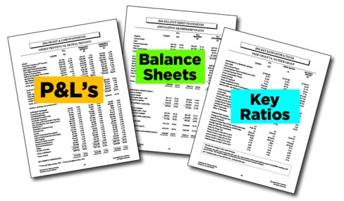 Samples of P&Ls, Balance Sheets, Key Ratios