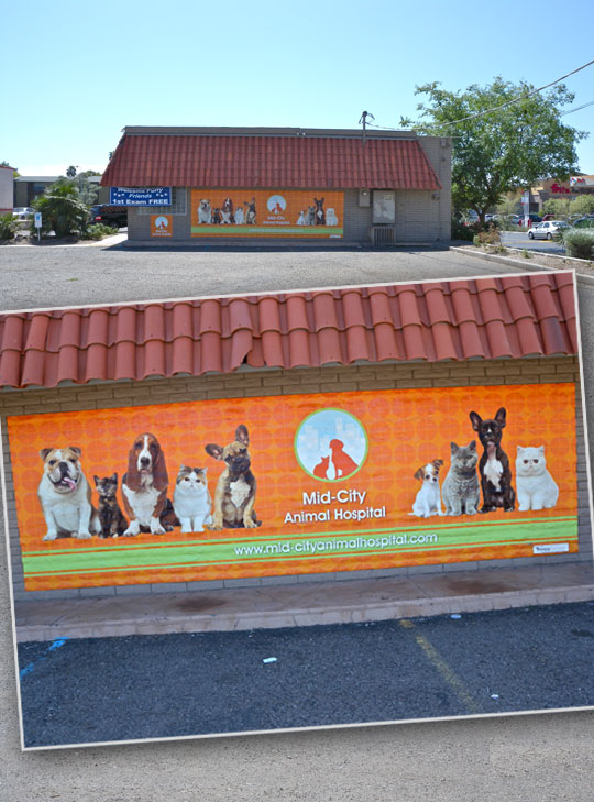 Mid-City Animal Hospital outdoor wall graphic, view from a distance and close up. This print required special graffiti proof lamination.