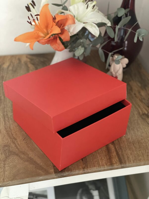 SHOE BOX – 8 x 8 x 4 inches