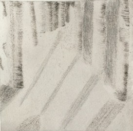 Diane Frost, A Cathedral of Tall Trees